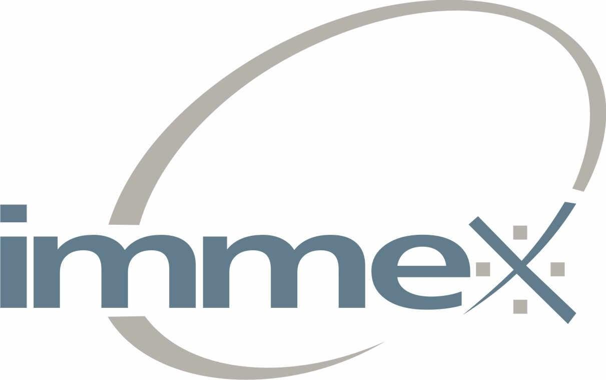 Logo IMMEX
