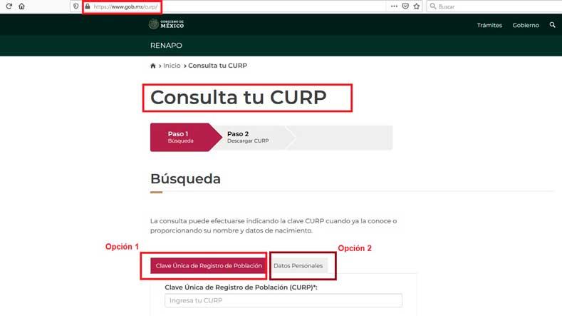 curp gob mx